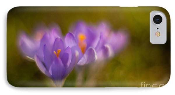 Springs Delicate Richness IPhone Case by Mike Reid