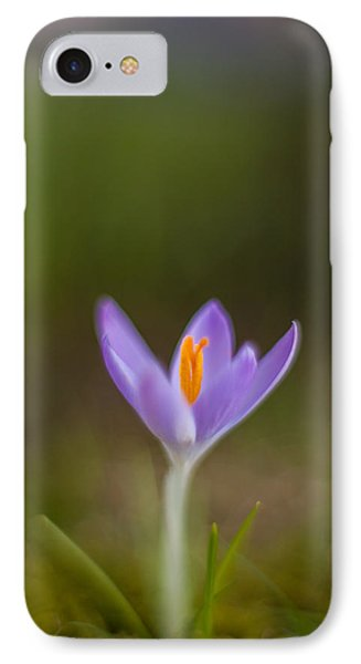 Springs Testament IPhone Case by Mike Reid