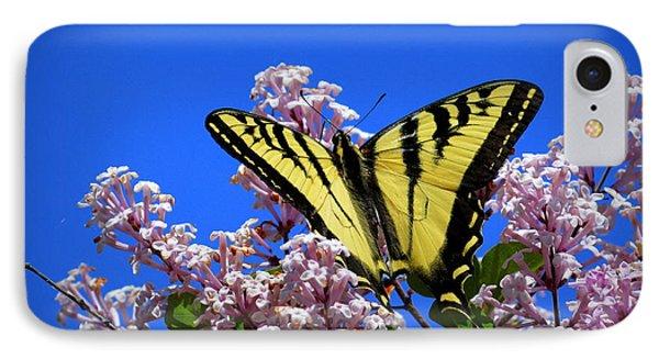 Springtime Beauty IPhone Case by Lori Seaman