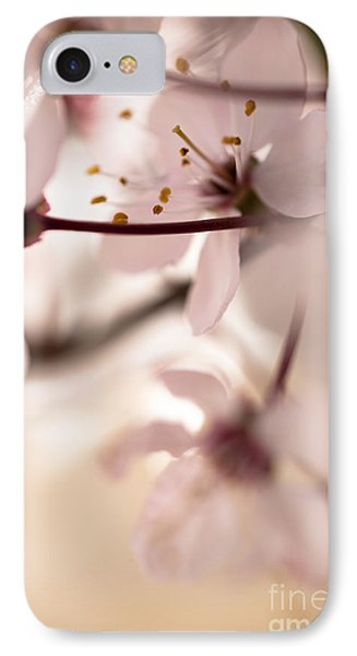 Springtime Blossom IPhone Case by Jan Bickerton