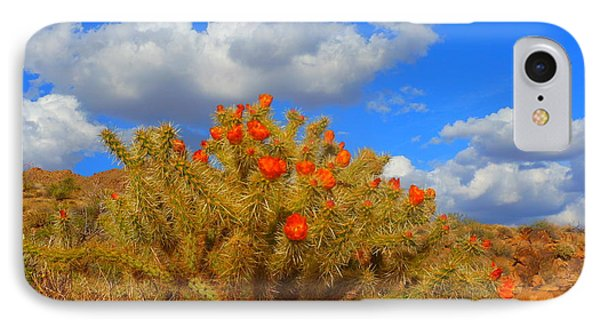 Springtime In Arizona Phone Case by James Welch