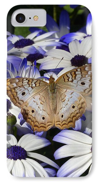 IPhone Case featuring the photograph Springtime In The Desert by Cindy McDaniel