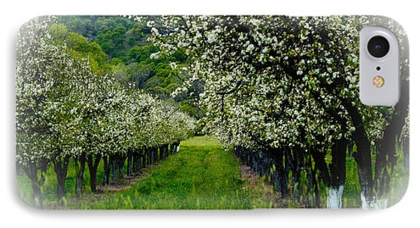 Springtime In The Orchard Phone Case by Bill Gallagher