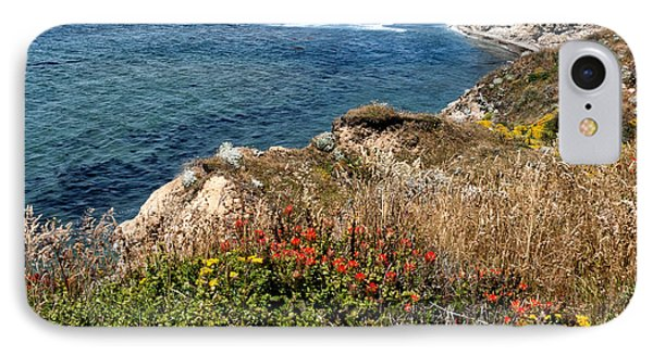 Springtime On The California Coast Phone Case by Kathleen Bishop