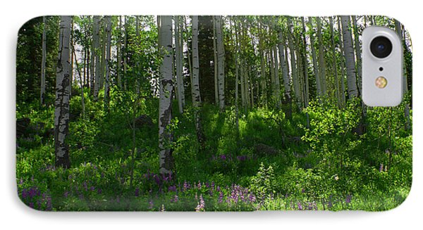Springtime On The Grand Mesa IPhone Case by Ernie Echols