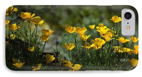 Springtime Poppies  Phone Case by Saija  Lehtonen