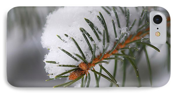 Spruce Branch With Snow IPhone Case