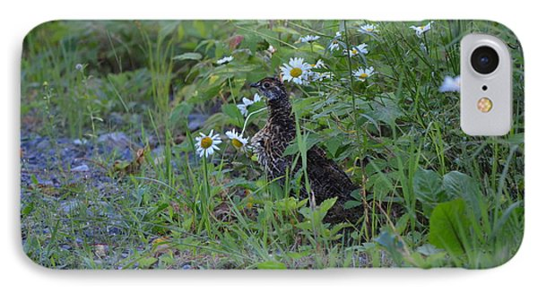 IPhone Case featuring the photograph Spruce Grouse by James Petersen