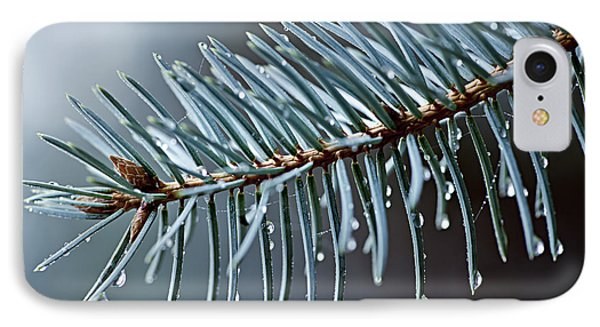 Spruce Needles With Water Drops IPhone Case
