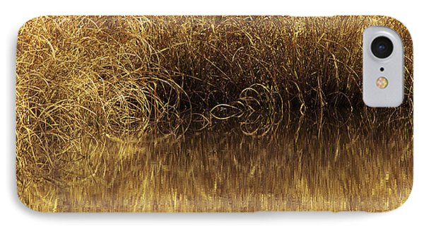 Spun Gold IPhone Case by Annette Hugen