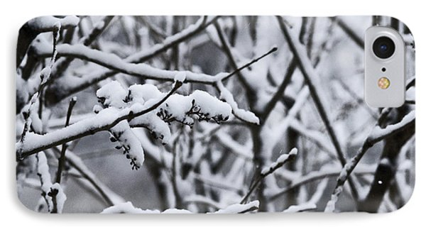 Square Snowy Branches IPhone Case by Birgit Tyrrell