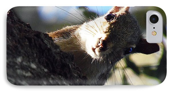 IPhone Case featuring the photograph Squirrel 003 by Chris Mercer