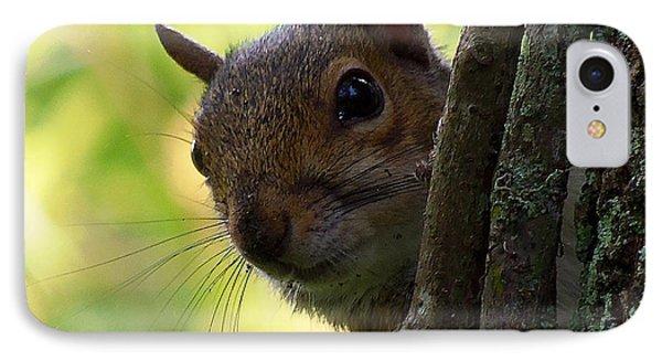 Squirrel 025  IPhone Case