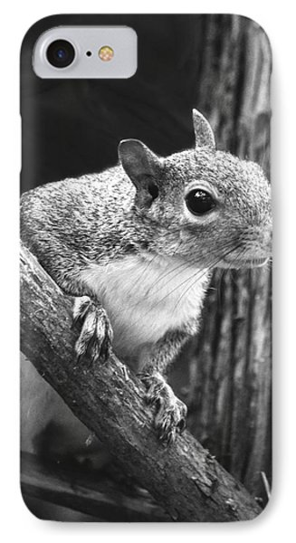 Squirrel Black And White Phone Case by Sandi OReilly