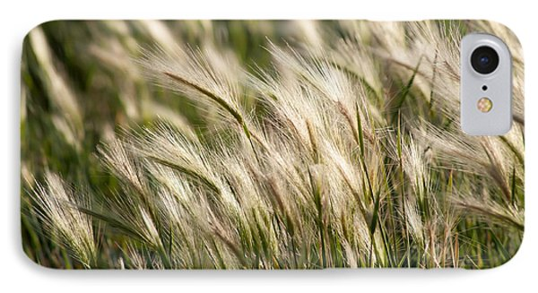 IPhone Case featuring the photograph Squirrel Grass by Fran Riley