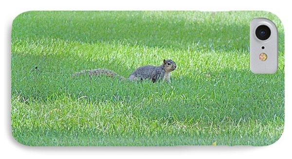 IPhone Case featuring the photograph Squirrel In Grass by Lorna Rogers Photography