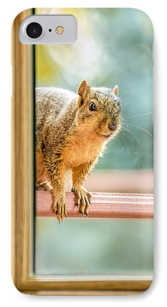 Squirrel In The Window Phone Case by LeeAnn McLaneGoetz McLaneGoetzStudioLLCcom
