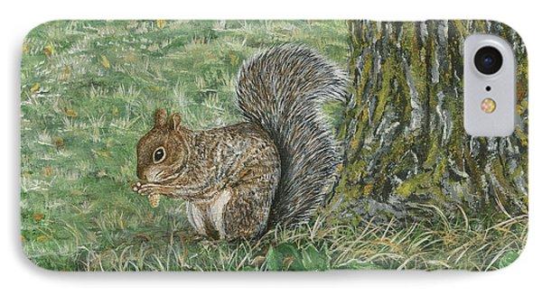 Squirrel IPhone Case by Lucinda V VanVleck