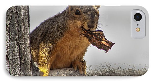 Squirrel Lunch Time IPhone Case