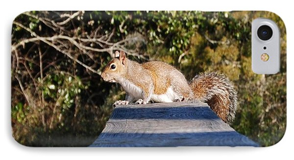 Squirrel On A Railing IPhone Case