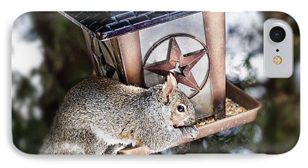 Squirrel On Bird Feeder Phone Case by Elena Elisseeva