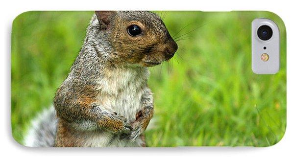 Squirrel Pose Phone Case by Karol Livote