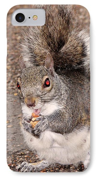 Squirrel Possessed IPhone Case by Rona Black