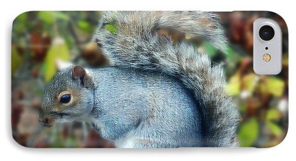 Squirrel Series 1 IPhone Case by Mikki Cucuzzo