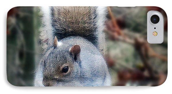Squirrel Series 2 IPhone Case by Mikki Cucuzzo