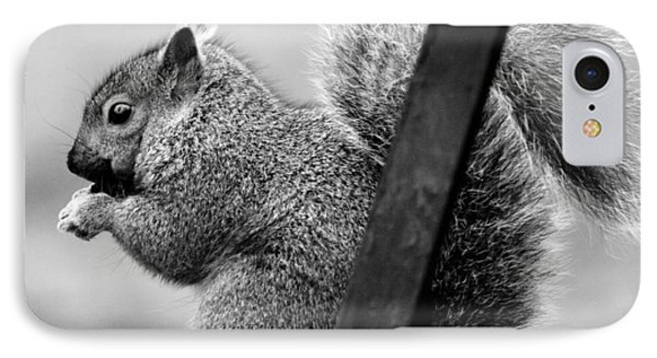 IPhone 7 Case featuring the photograph Squirrels by Ricky L Jones