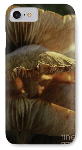 Stacked Fungas IPhone Case by Lori Mellen-Pagliaro
