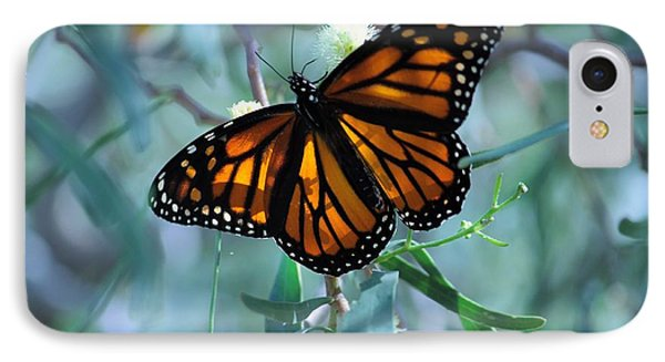 Stained Glass Wings IPhone Case