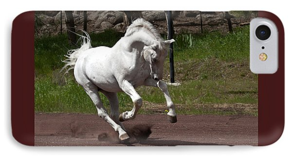 IPhone Case featuring the photograph Stallion D4052 by Wes and Dotty Weber