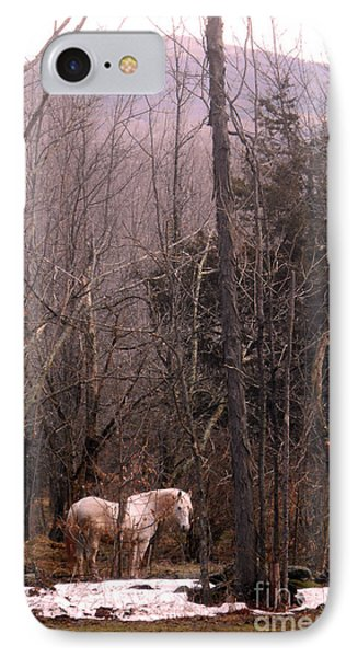 Stallion In The Mountain Pasture Phone Case by Patricia Keller