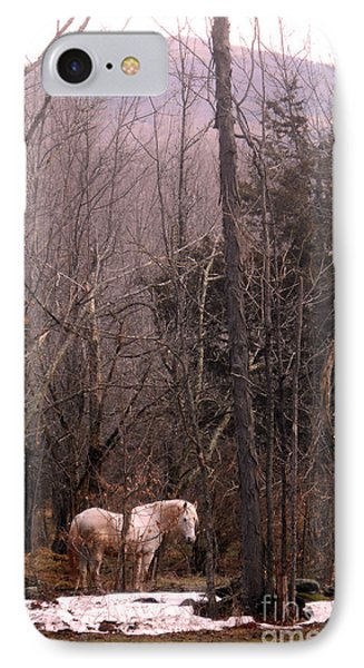 Stallion In The Mountain Pasture IPhone Case