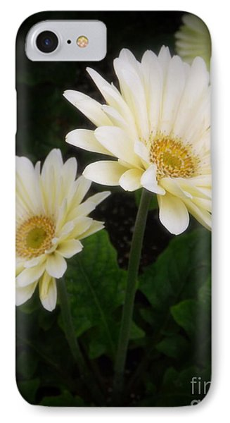 Stand By Me Gerber Daisy IPhone Case by Lingfai Leung