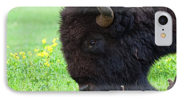 Stand Your Ground IPhone Case by Jim Garrison