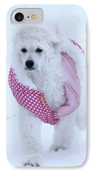 Standard Poodle In Winter IPhone Case