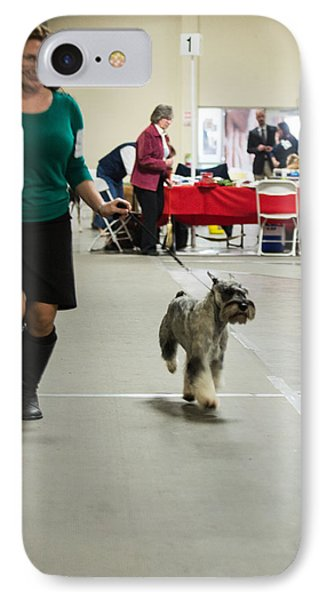 Standard Schnauzer IPhone Case by Dog Show Video