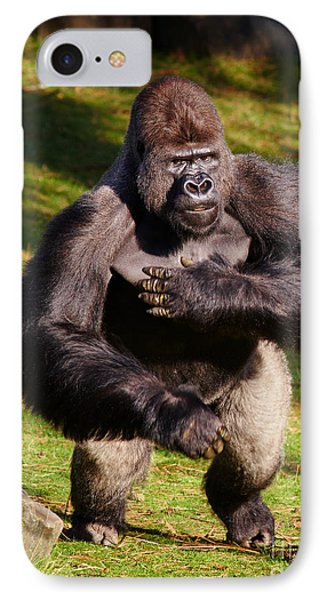 Standing Silverback Gorilla IPhone Case
