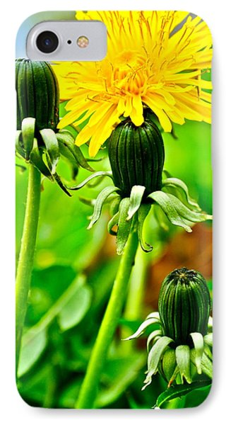 Standing Tall IPhone Case by Frozen in Time Fine Art Photography