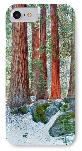 Standing Tall - Sequoia National Park Phone Case by Sandra Bronstein