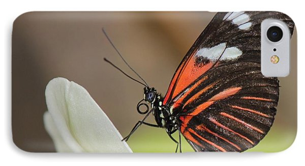 Standup Butterfly IPhone Case