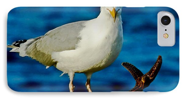 Starfish And Seagull Dance On The Rocks Phone Case by Carol F Austin