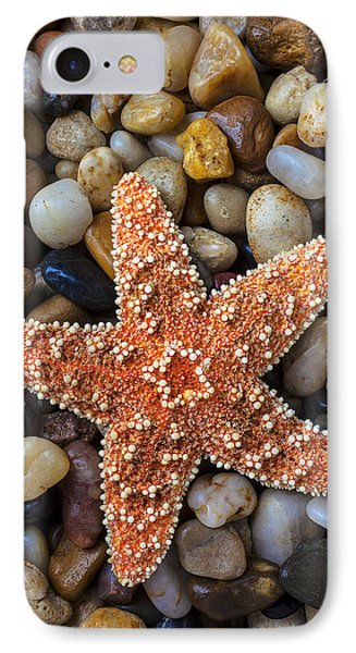 Starfish On Rocks Phone Case by Garry Gay