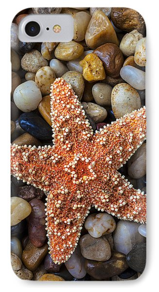 Starfish On Rocks IPhone Case by Garry Gay