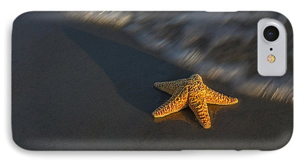 Starfish On The Beach IPhone Case by Susan Candelario