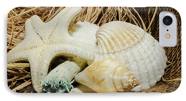 Starfish Shells And Driftwood IPhone Case by MaryJane Armstrong
