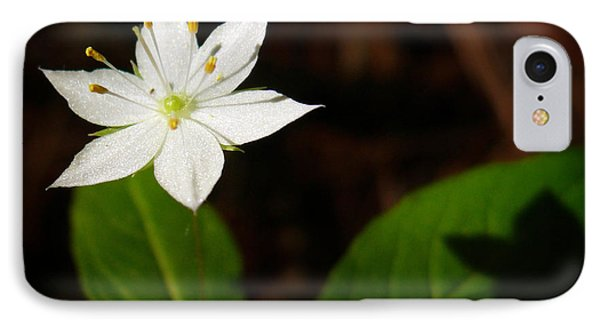 Starflower Phone Case by Christina Rollo