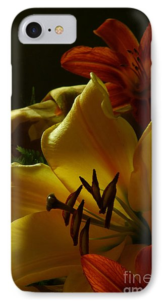 Stargazer2 IPhone Case